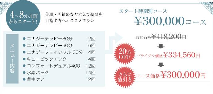 4から8か月前からスタートの30万円コース